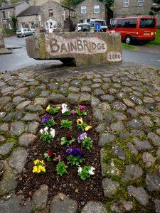 Bainbridge3