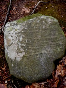 Looks like this boulder was tied with fossilized twine.